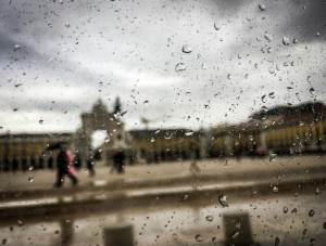Summer rain13