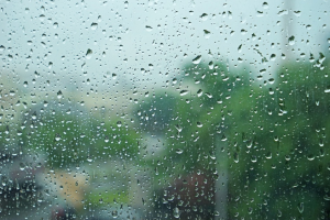 Summer rain18