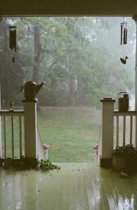 Summer rain20