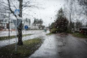 Rainy3