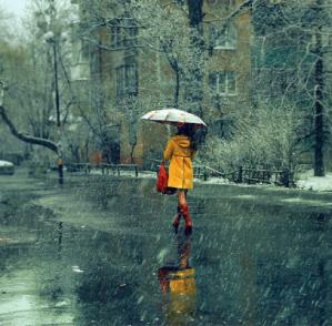 Rainy4