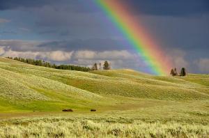 Rainbow13