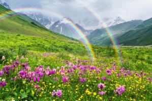 Rainbow16